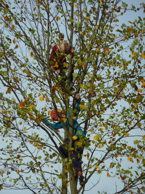 2014_09_Klettergarten_2
