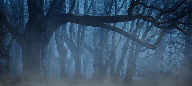 Tauch ein in die Märchenwelten!
